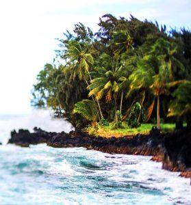Tips for your Trip- Sri Lanka
