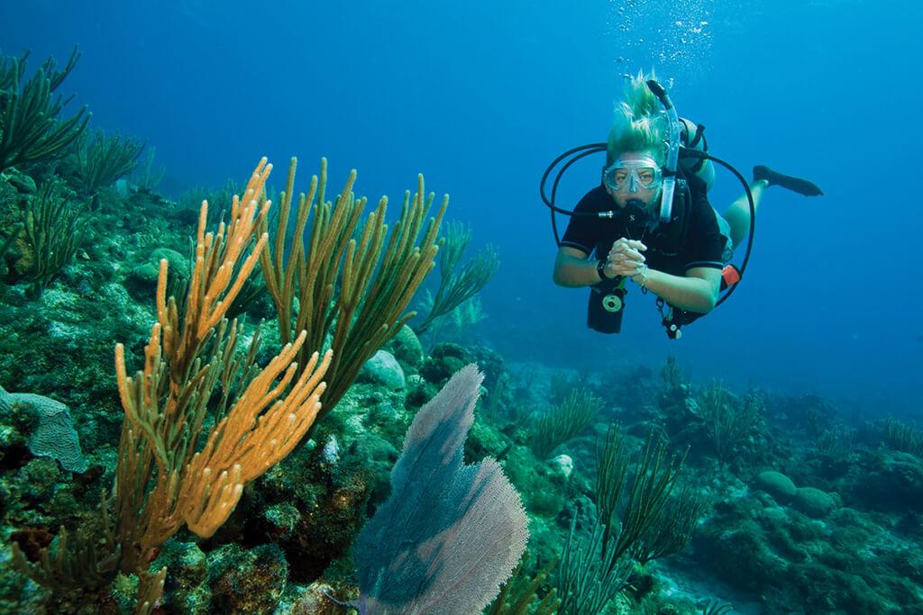PADI Adventure Diver Course with Divinguru