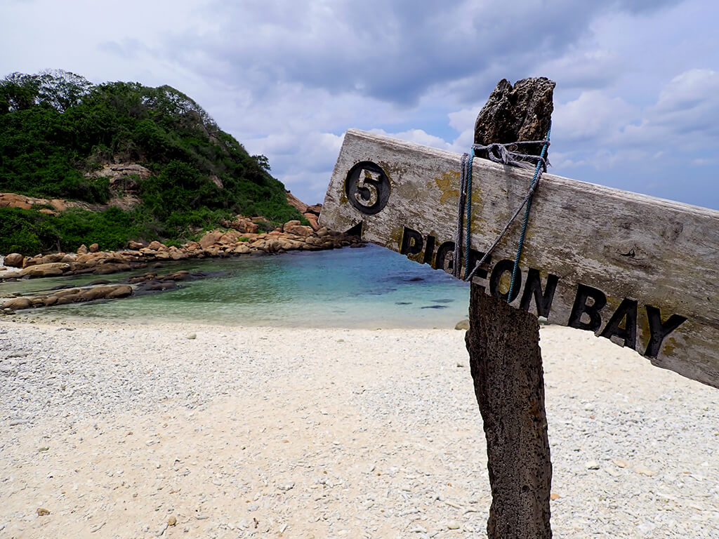 What is the best time to Snorkel in Pigeon Island? Find out when and where to spot Blacktip reef sharks, green sea turtles, hawksbill sea turtles and more in the snorkeling area of Pigeon Island Marine National Park in Sri Lanka
