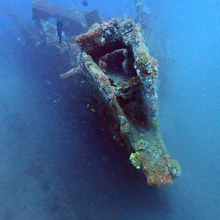 Dive on the famous Rangoon Wreck in Galle with Divinguru, the most beautiful wreck in Unawatuna at 30 meters depth
