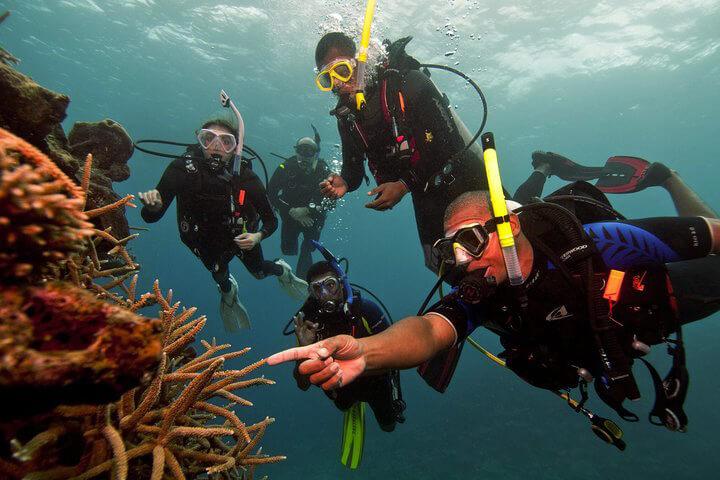 Try Scuba Diving for beginners with Divinguru in Sri Lanka