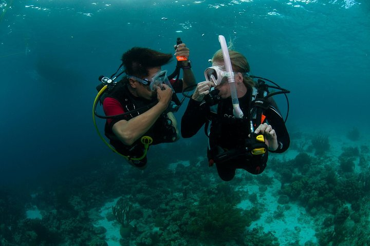 PADI Scuba Diver Course subset of PADI OWD with Divinguru