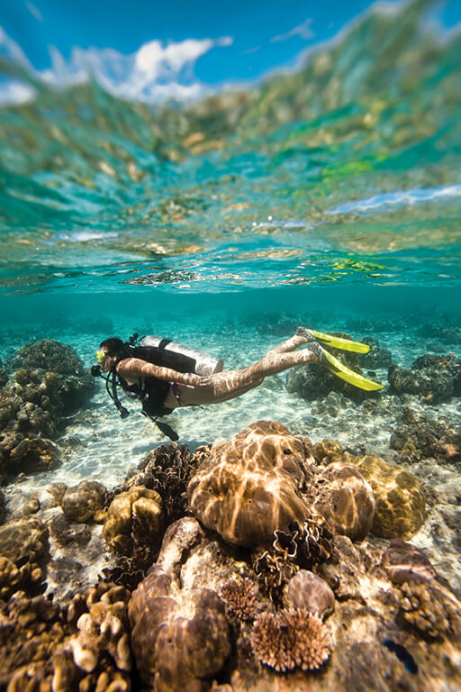 diving in shallow water for everyone with Divinguru in Sri Lanka